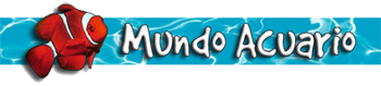 Mundo Acuario